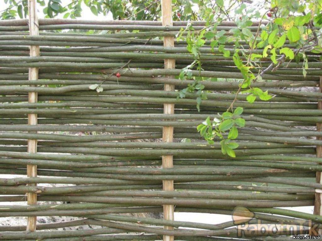 Плетеный забор своими руками из лозы
